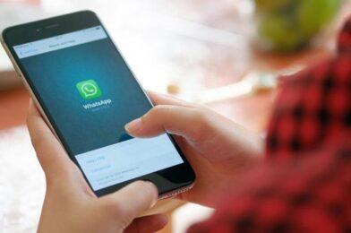 iProfesional | Tecnología | Mensajería instantánea ¿Funcionará?: WhatsApp añade esta función para competir con TikTok